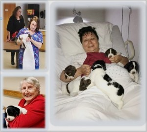 PUPPIES!!! FUN FOR RESIDENTS AND STAFF
